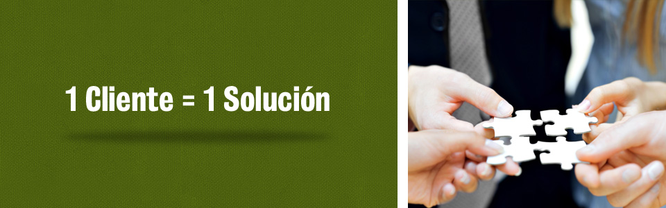 1 cliente 1 solucion